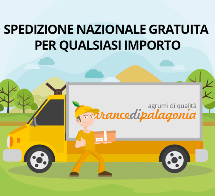 spedizione-nazionale-gratuita-arance-di-palagonia-banner-2